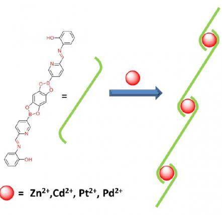 Rys. 1 Schemat tworzenia dynamicznego polimeru koordynacyjnego; na czerwono zaznaczono trzy dynamiczne wiązania: estrowe, iminowe, kieszeń koordynacyjną.